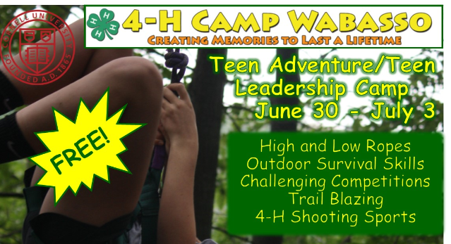 Free Teen Leader Camp @ 4-H Camp Wabasso