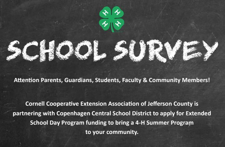SCHOOL SURVEY - EXTENDED SCHOOL DAY PROGRAM FOR THE SUMMER!